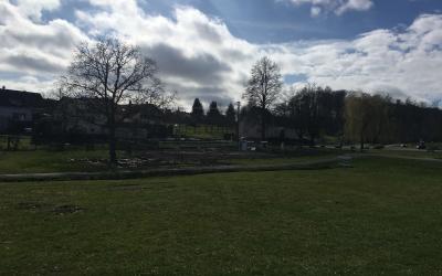 Calsithencis-Park-Elsenz-04..03.2020-1
