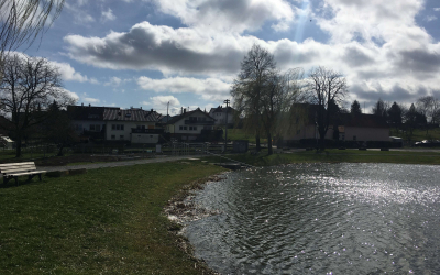 Calsithencis-Park-Elsenz-04..03.2020-10