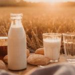 Ist Milch gesund oder ungesund?